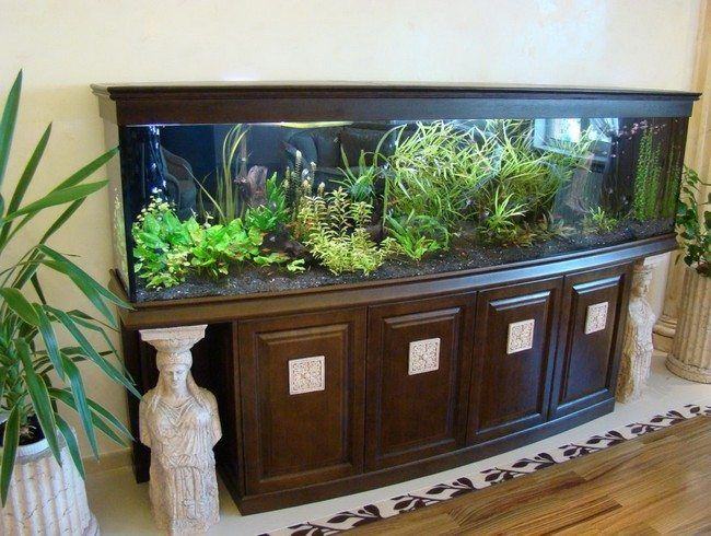 fish tank in the cupboard