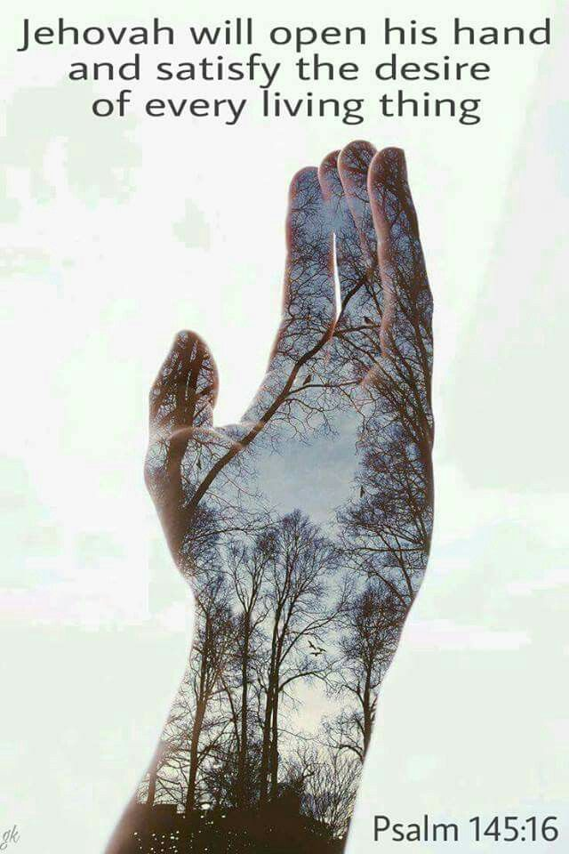 Jehovah will open his hand and satisfy the desire of every living thing. - Psalm 14516.