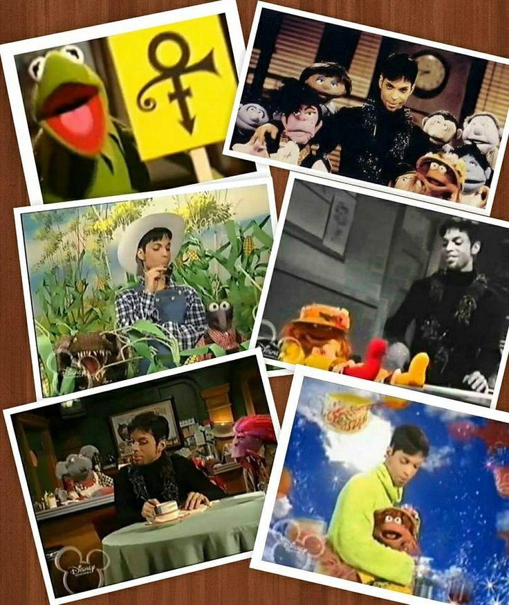 60 Best Muppet Fan Images On Pinterest: 2097 Best Images About Prince Roger Nelson /A True Fan