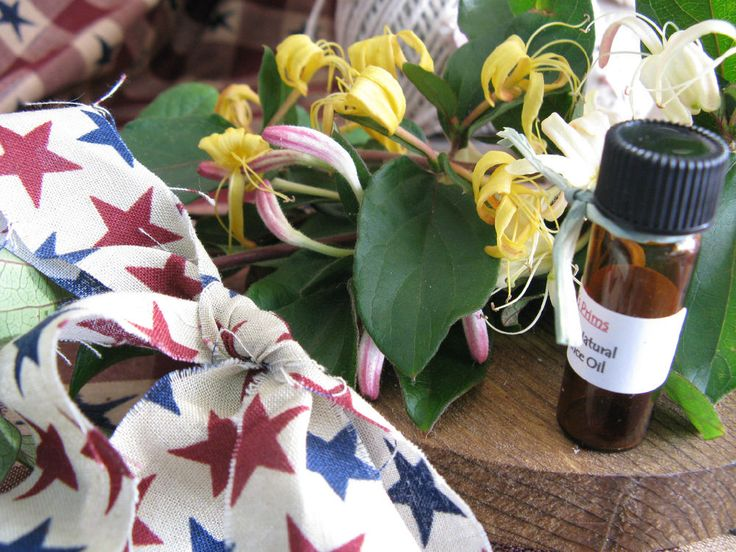 New Natural Wild Honeysuckle Perfume Fragrance Oil-4ml-Wild & Sweet Floral Scent | Health & Beauty, Fragrances, Women's Fragrances | eBay!