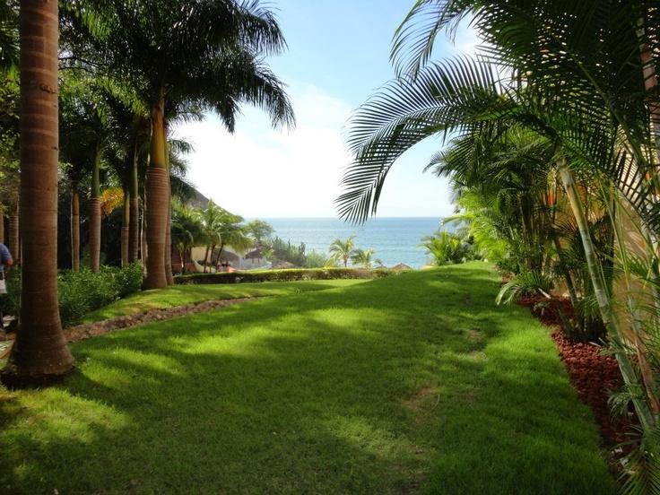 Grand Palladium Resort Punta de Mita http://www.facebook.com/media/set/?set=a.318786268135147.94777.234871316526643=3