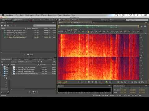 Remove noise from audio files with Adobe Audition CC | Adobe Audition CC…