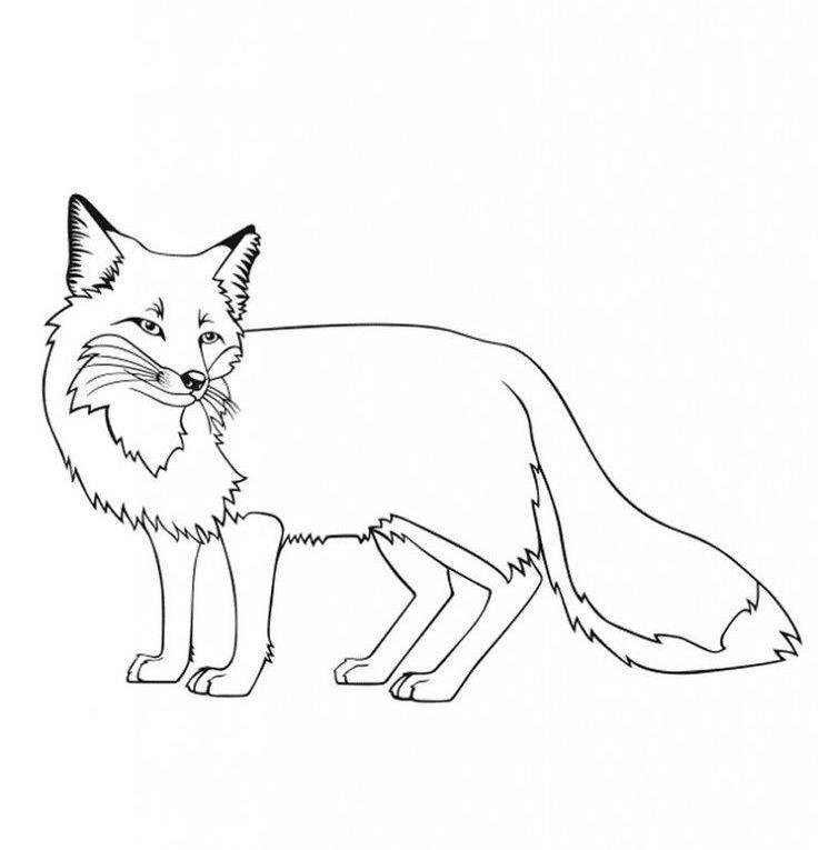 Free Printable Fox Coloring Pages For Kids Pferdezeichnungen Ausmalen Fuchs Basteln