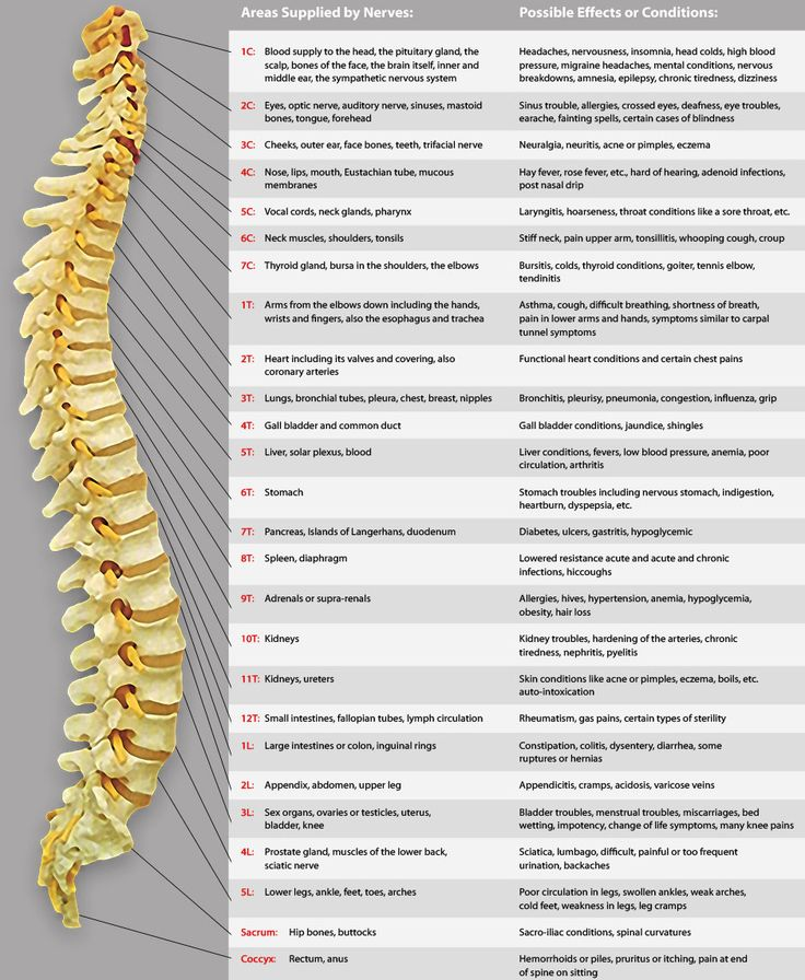 17 Best Images About Sciatica Nerve Exercises On Pinterest