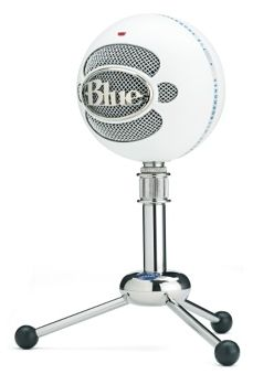 Blue Snowball Microphone- for interviewing mom and MIL for verbal histories.