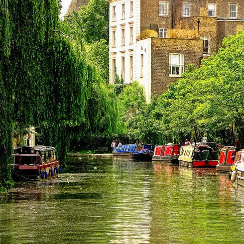 """August 19: """"The Camden creature is no mythical beast, but nor should it be here. Perhaps 30 Aesculapian snakes call Regent's Canal home, and today's first mission is to track one down."""" A Summer of British Wildlife; www.bradtguides.com #100dayswild"""