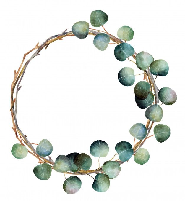 Watercolor christmas wreath with eucalyptus branch…