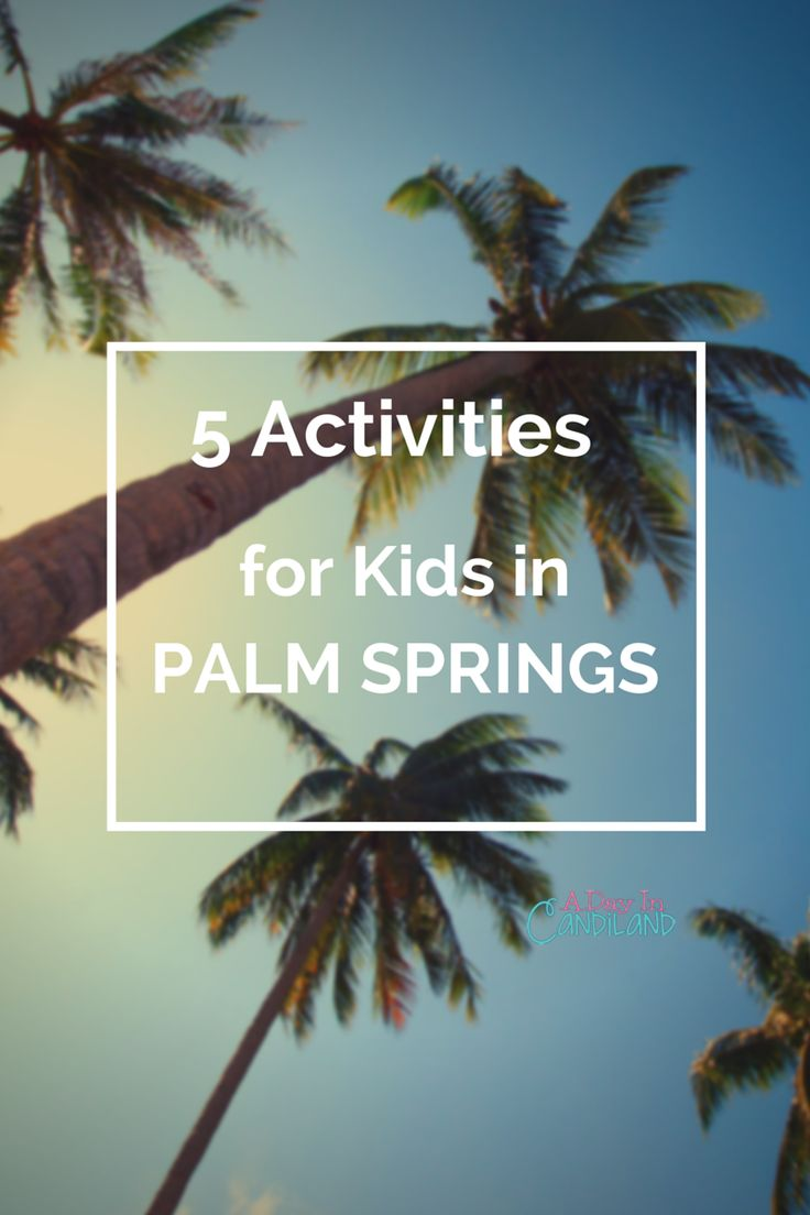 Are you looking for at least 13 Fun Things Kids can do in Palm Springs? There are lots of activities to do here in the desert. Visit this list to see them all.