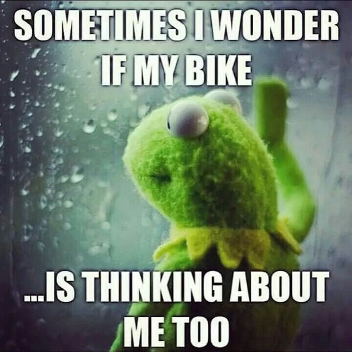 14 Best Cool Bike Sh Images On Pinterest Bicycle Art