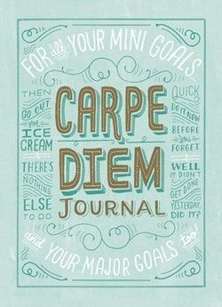Put pen to the page. Love that this journal is for your mini and major goals. :: Carpe Diem Journal by Mary Kate McDevitt