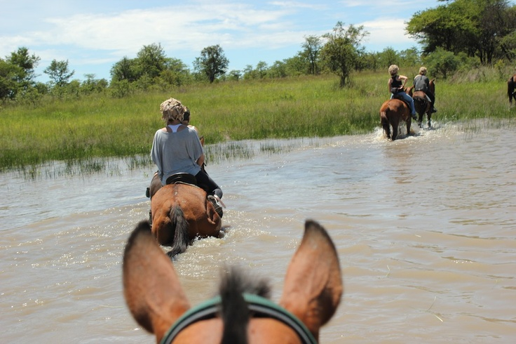 Crossing the water hole.