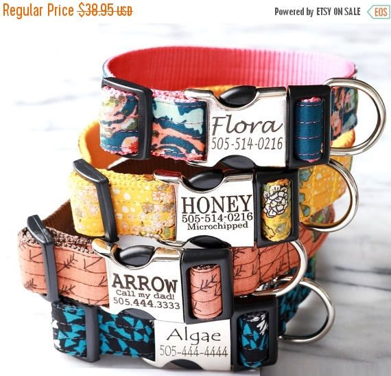 SALE Personalized Lazer Engraved Metal Buckle Dog Collar 5