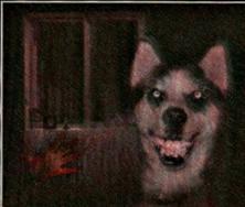 Smile Dog http://creepypasta.wikia.com/wiki/Smile_Dog