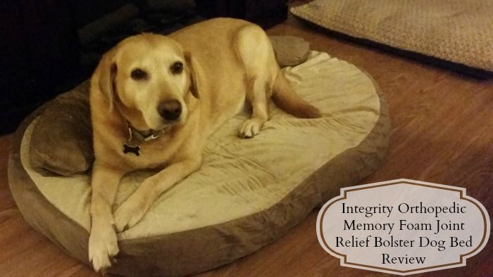 Our thoughts on the Orthopedic Memory Foam Joint Relief Dog Bed. #review #pets