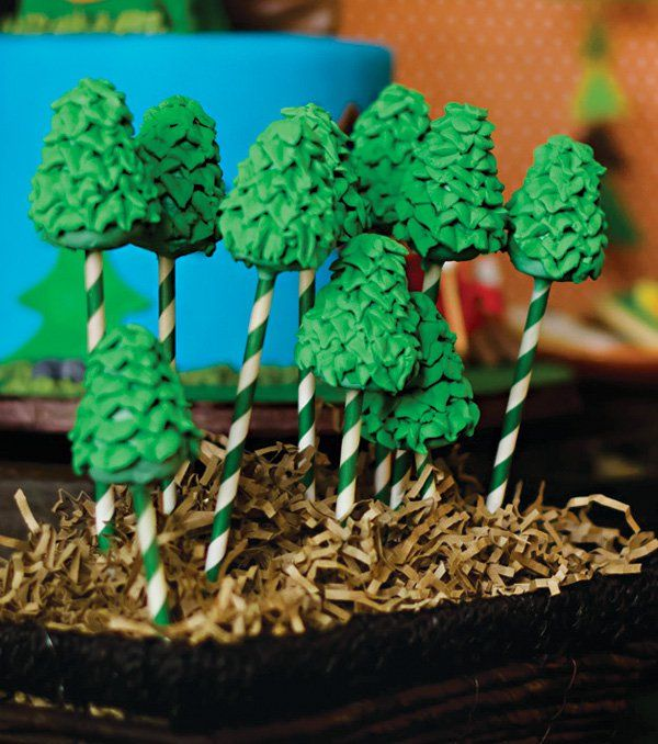 """""""Happy Trails"""" Rustic Campfire Birthday Party"""