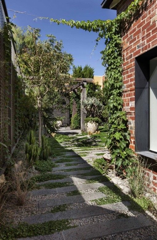 Garden Planning @ Baffle House | Clare Cousins Architects