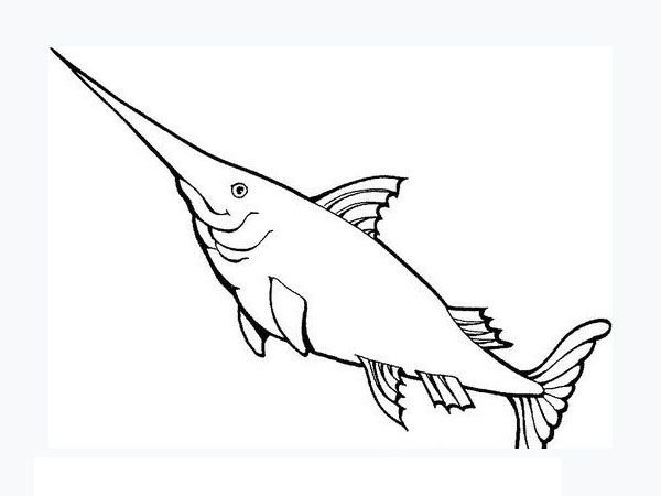 fish coloring pages for kids preschool crafts
