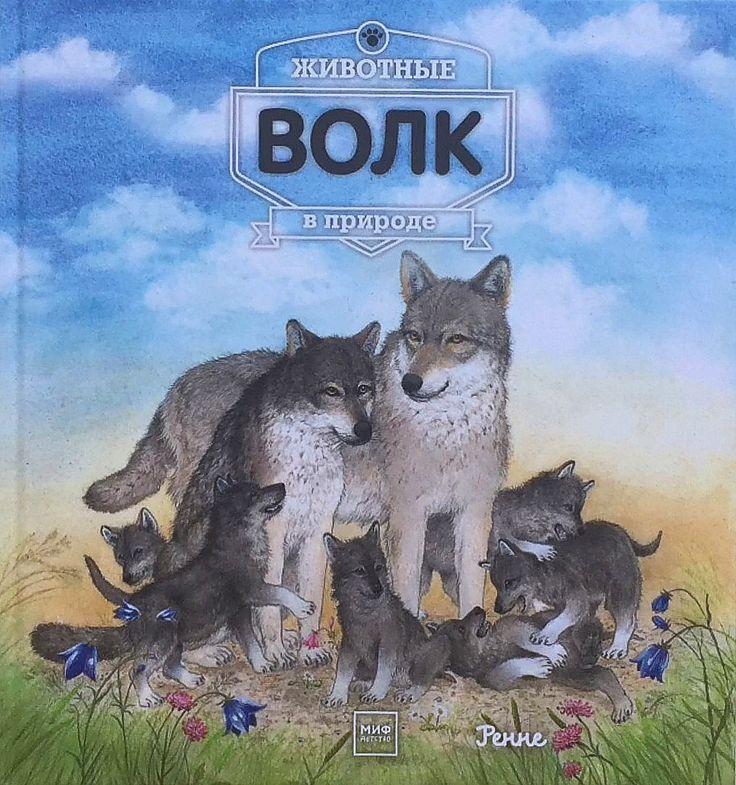 """У нас появилась еще одна красивая и увлекательная книга про дикую природу для детей. Мы уже писали про эту серию, та книга была про медведей, а эта - про волков.  """"ВОЛК. Животные в природе"""" Ренне от @mifdetstvo  http://www.labirint.ru/books/563650/?p=21234  Из книги Вы узнаете, какие отличительные черты этого зверя делают его столь страшным для обитателей леса, как он живет, чем питается, какие взаимоотношения у него со своими сородичами, почему волки воют и как появляются на свет волчата…"""