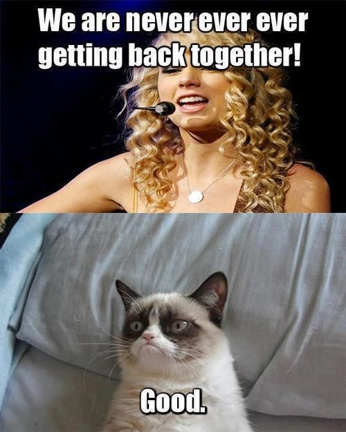 Grumpy Cat& Taylor Swift: We are never getting back together! - Good.