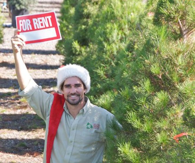 Living Christmas trees for rent- this is based in Ca.  I really hope this catches on everywhere!
