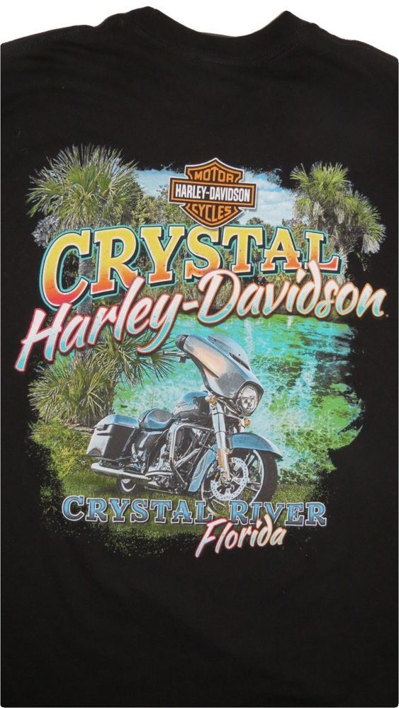 HARLEY DAVIDSON T Shirt L Black CRYSTAL HD Florida FL Biker HD I Got Mine At #HarleyDavidson #GraphicTee