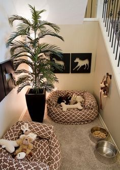 Have a little nook somewhere like this and maybe another stray bed or two elsewhere in the house