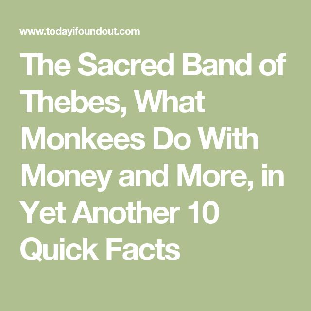 The Sacred Band of Thebes, What Monkees Do With Money and More, in Yet Another 10 Quick Facts