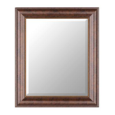 Bronze Classic Framed Mirror, 22x26 | Kirkland's Hall Bath