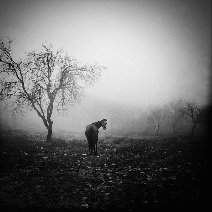 Ekin Kucuk captured beautifully mysterious photos of the Gallipoli peninsula. #travel #photography #blackandwhite