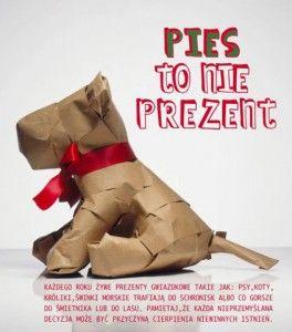 """Wirtualna kampania akcji """"Pies to nie zabawka""""."""