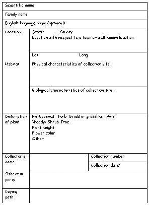 Blank Specimen Label Plants Plants How To Make Labels