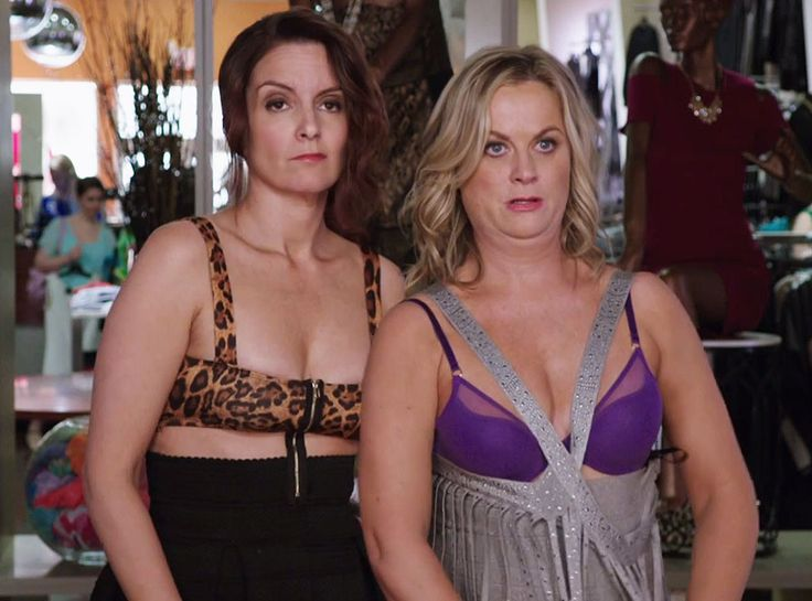 2015 Holiday Movie Guide: Get Ready to LOL With Tina Fey, Amy Poehler & More  Amy Poehler, Tina Fey, Sisters