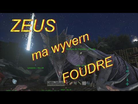 Enjoy Game's: je vous présente ZEUS ma wyvern