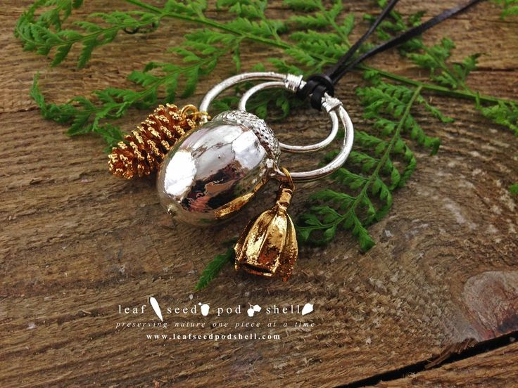 This beautiful acorn is preserved in a bright silver electroplated finish. Hidden within is a real hand picked natural acorn. This particular piece also feature two companions, a tiny cone and a tiny gum nut, both in a stunning bright gold finish.  Available from www.leafseedpodshell.com #leafseedpodshell #crystal #crystals #electroform #electroforming #electroformed #jewelry #jewellery