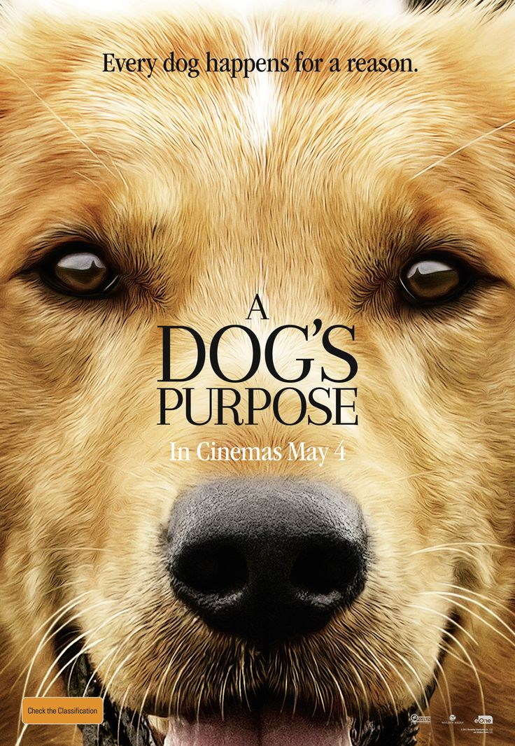 A Dog S Purpose Free Online Streaming