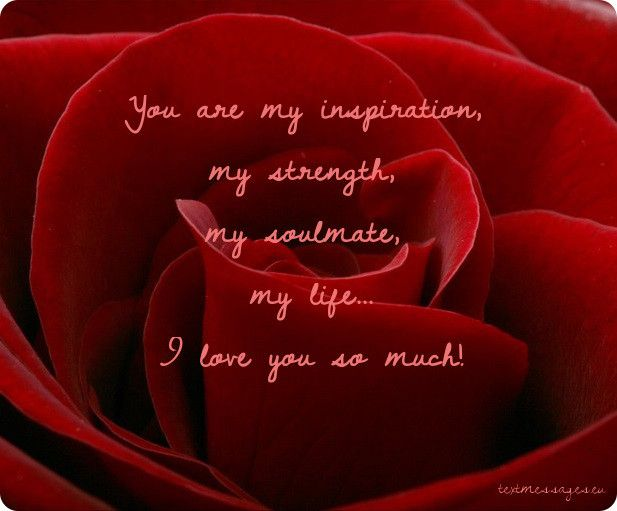 Ecard with red rose and wedding anniversary message for husband