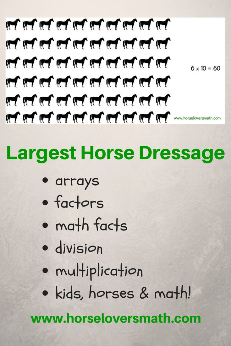 A new Guinness World Record was set for the largest horse dressage—60 horses performed for over 6 minutes. How many different ways can 60 horses be grouped? Horse Lover's Math Club members see how arrays are a great way to answer that question! https://www.horseloversmath.com/guinnessworldrecordlargesthorsedressage