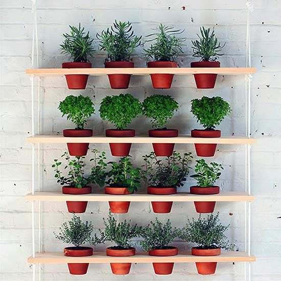 Create a space-saving vertical herb garden with these brilliant DIY ideas.