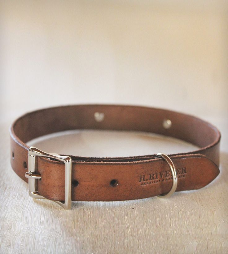 Leather Dog Collar with Custom Engraved Plate