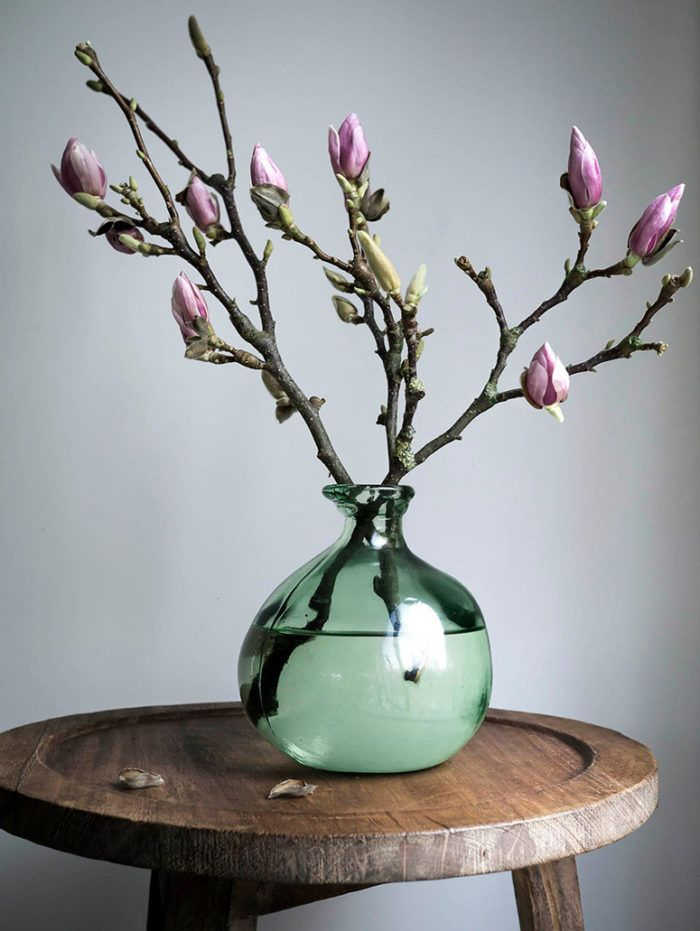 Defy the snow – with 7 simple spring tips for the home