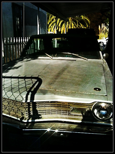 7 best wheels images on pinterest biking cars and fiat a 1973 dodge dart swinger 440 re released into the wild fandeluxe Gallery