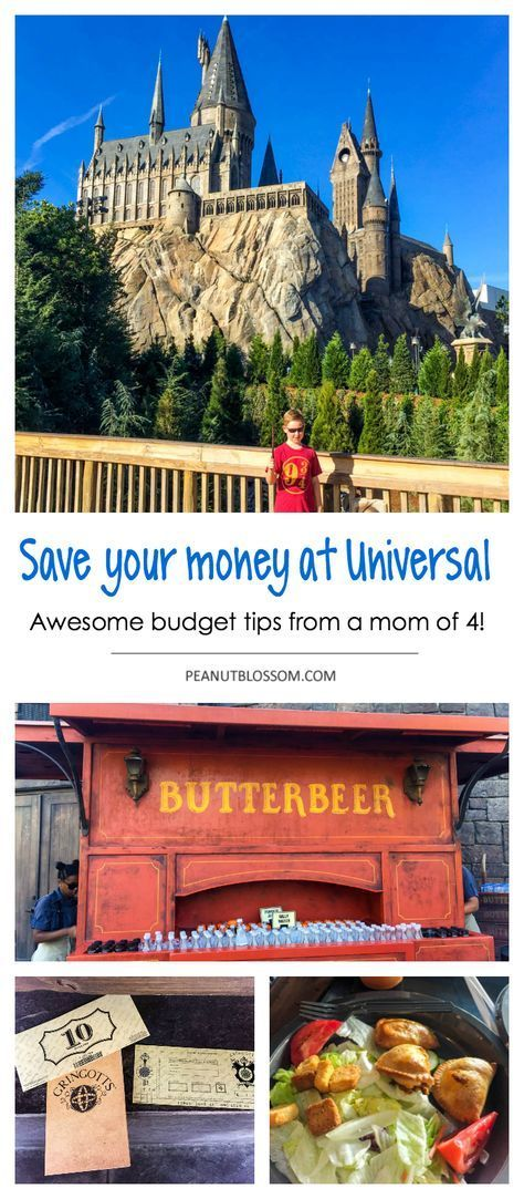 Save your cash! Visiting Harry Potter at Common on a finances