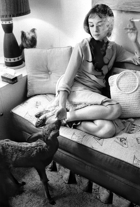Audrey Hepburn. This is one of my favorite photos of her- I have it in my studio + this is why I want a pet deer