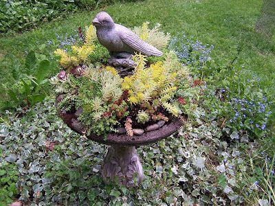 Beatrice Euphemie: Bird Bath Planter for leaky birdbath that won't hold water anymore.