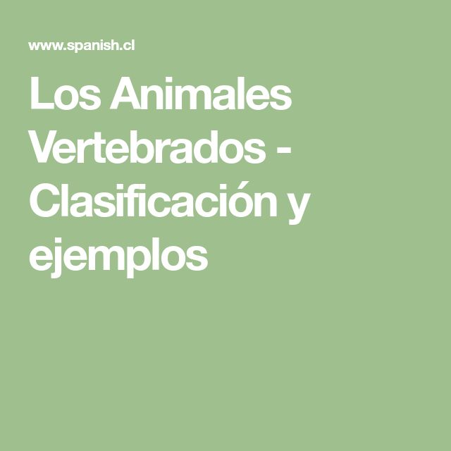 Los Animales Vertebrados - Clasificación y ejemplos