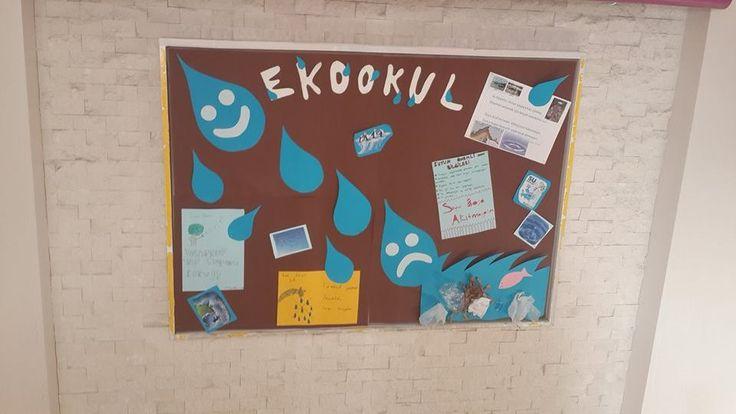 eko-okul projesi :)