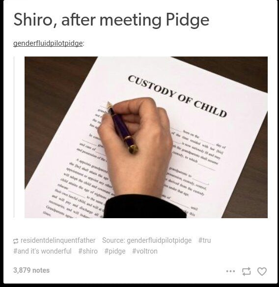 Shiro & Pidge