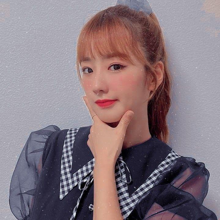 Kim Nam-joo Apink táncosnő, mások, egy rózsaszín, kar png | PNGEgg