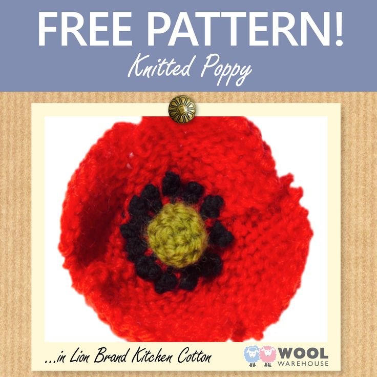 Knitting Pattern For A Remembrance Poppy : This weeks free pattern shows you how to make your own knitted poppy to ...