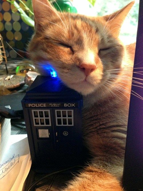 I Lurvs You Doctor Who. Whom. Whomever. For the Whovians :)